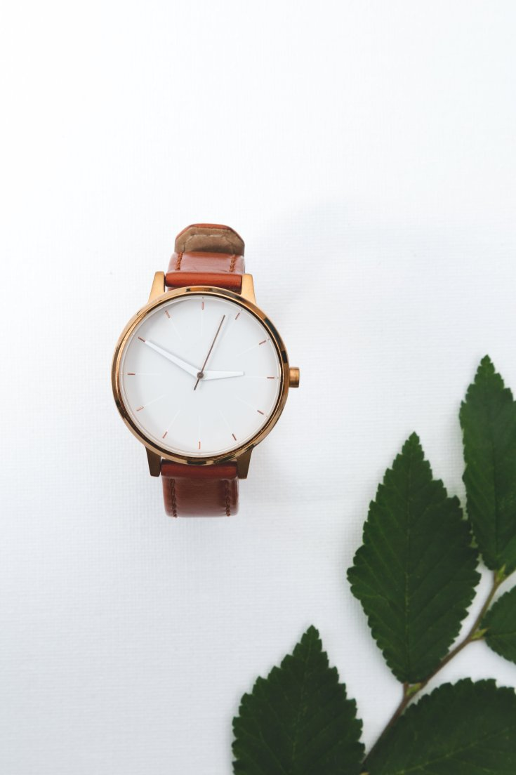watch-with-leather-strap-near-leaves